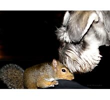May I Kees You Face? Photographic Print