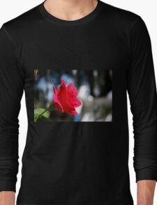 Bright and Colorful RED ROSE close up Long Sleeve T-Shirt