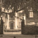 The Vanishing South by Kent Burton