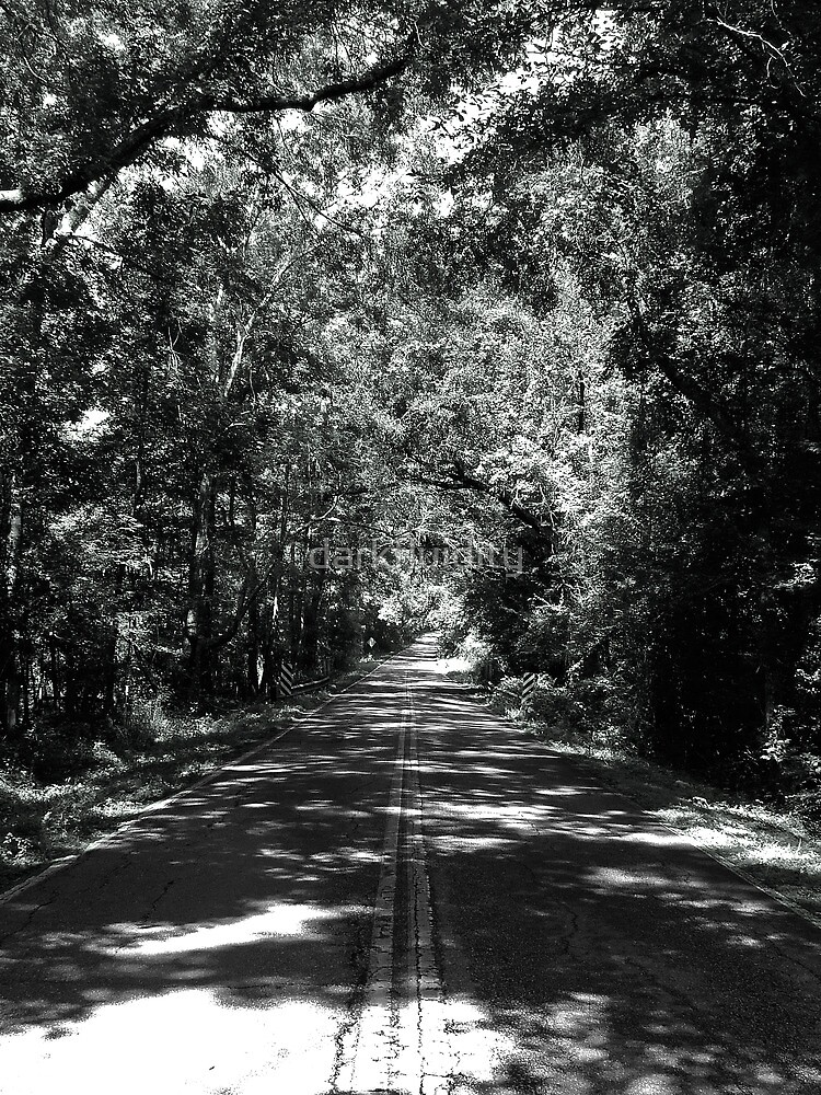 Old Saint Augustine Road by darkfluidity