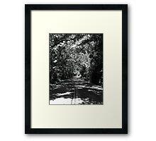 Old Saint Augustine Road Framed Print