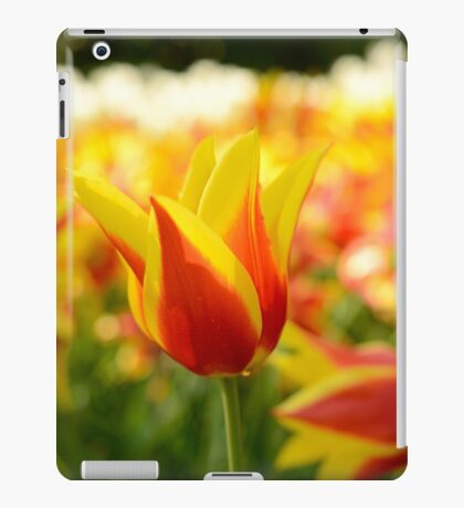 Orange tulip iPad Case/Skin