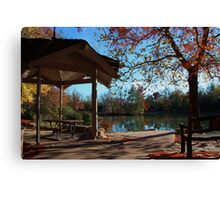 Kansas Country Fall Color's Canvas Print