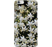 Black Elderberry flowers (Sambucus nigra) iPhone Case/Skin
