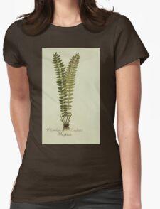 Plantarum Indigenarum et Exoticarum - Lukas Hochenleitter und Kompagnie 1788 - 410 Womens Fitted T-Shirt