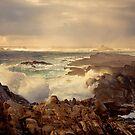 Weston Beach, Point Lobos, Carmel California by Maria Draper