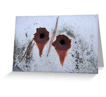 """""""Bullet Holes"""". Abandoned Auto. Charles County, Maryland. 2007 Greeting Card"""