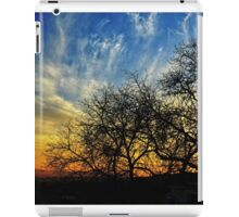 Sunset and Silhouettes iPad Case/Skin