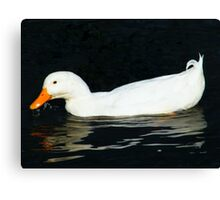 Reflective Duck Canvas Print
