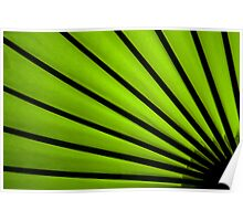 Lacquered Lime Poster