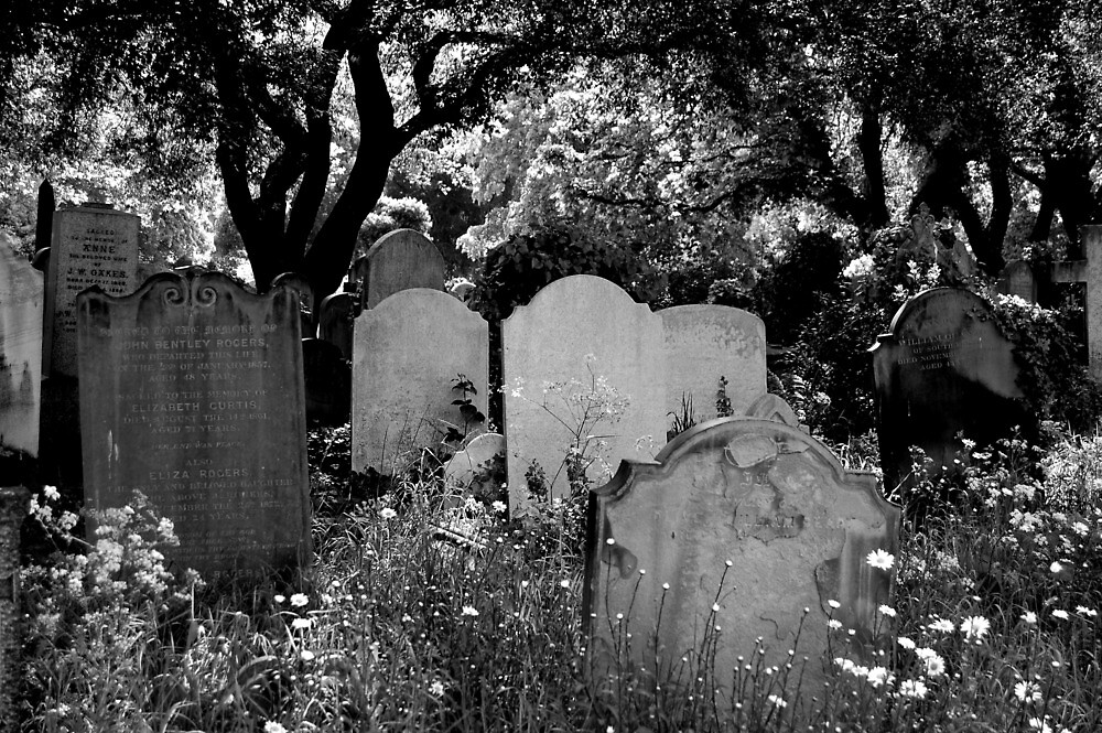 Brompton Cemetery. London, England. 2009 by jwhimages