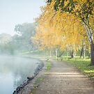 Lake Burley Griffin by Amanda-Jane Snelling