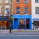 Very Blue by Christine Anna Wilson