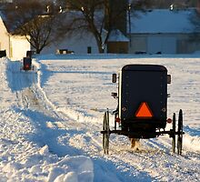 Horse and Buggies in the Snow by Mark Van Scyoc