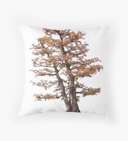 Bonsai tree illustration Throw Pillow