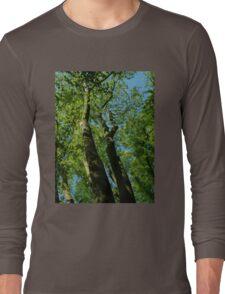 Tall Trees Long Sleeve T-Shirt
