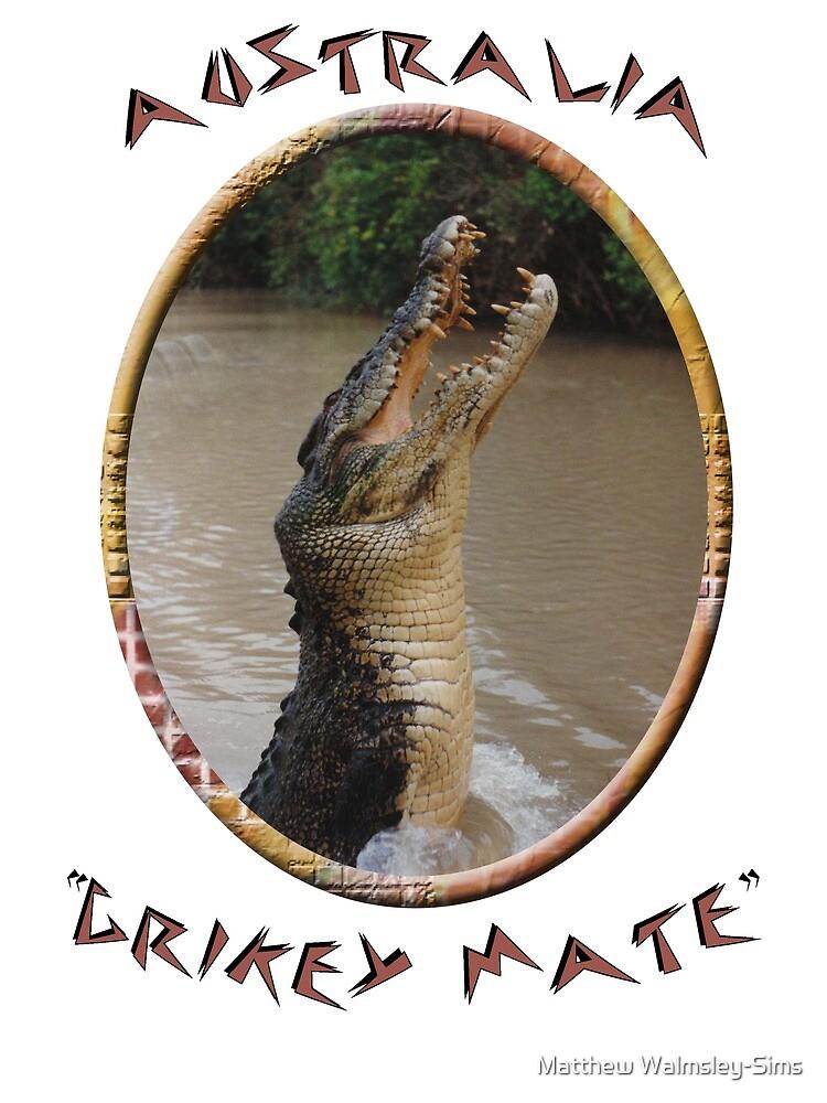 Jumping Croc Australia by Matthew Walmsley-Sims