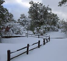 Country Fence In The Snow by Diana Graves Photography