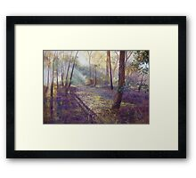 'Dappled Light'  Framed Print
