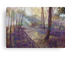 'Dappled Light'  Canvas Print