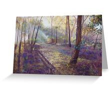 'Dappled Light'  Greeting Card