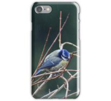 The misery of winter iPhone Case/Skin