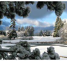 winter blues Photographic Print
