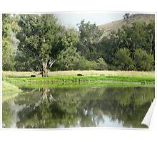Rural Scene, Southern NSW,  Australia. Poster