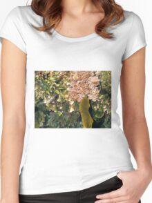 Rock Pool, Wollongong, NSW, Australia. Women's Fitted Scoop T-Shirt