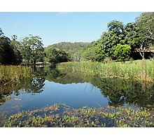 Audley, Royal National Park, Sydney, NSW, Australia. Photographic Print