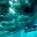 Duck Dive, Samoa. by Stewart Allen