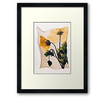 Yellow Welsh Poppy - by Paul Williams Framed Print