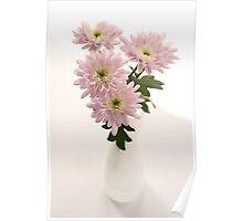 chrysanthems in white vase Poster
