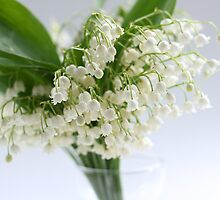 lily of the valley in vase by OldaSimek