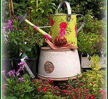 In the Garden by ColinBoylett