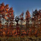 2009 Colorado September 36 by greg1701