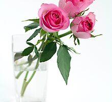 three roses in vase by OldaSimek