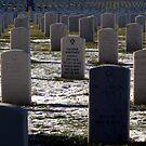 National Cemetery by mekea