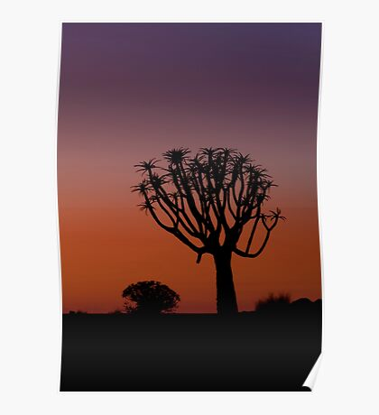The Quiver Trees of Namibia Africa Poster