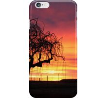 Tree skeleton in the sunset...  iPhone Case/Skin