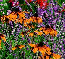 Full Of Flowers by JoeGeraci