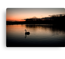 Solo at Sunset Canvas Print