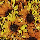 Sunflowers by Beatriz  Cruz