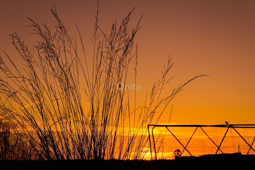 Sunset in Simplicity by Qnita
