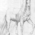Horse by Gabrielle Wilson