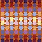 Warm berry colors hexagon quilt blocks by goanna