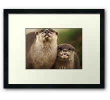 Otter`s Pride Framed Print
