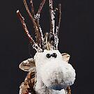 White Reindeer by George Davidson