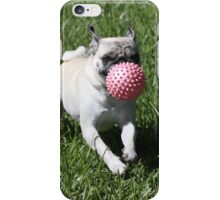 Dog and Ball iPhone Case/Skin