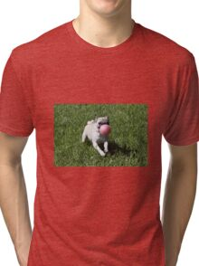 Dog and Ball Tri-blend T-Shirt